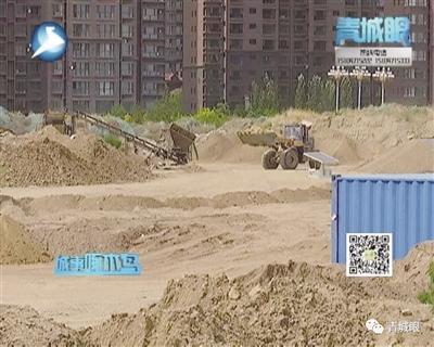 青城啄木鸟